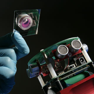 Robô com neurônios