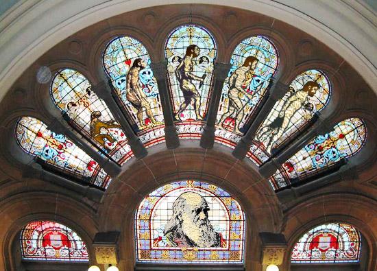 150 anos depois, a Igreja Católica aceita Teoria da Seleção Natural de Charles Darwin.