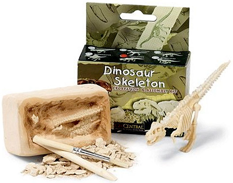 esqueleto-dinossauro-kit-01.jpg