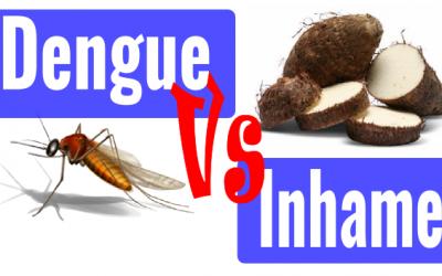 Suco de inhame NÃO cura Dengue