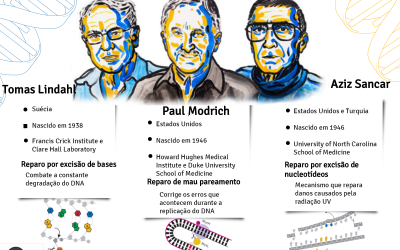 Nobel de química 2015 em infográficos