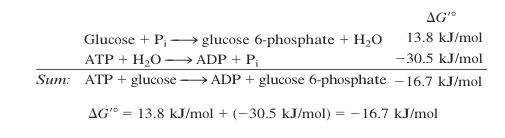 fosforilação