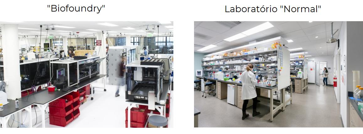 """Figura 5: """"Biofoundry"""" versus um Laboratório de Biotecnologia comum. As bancadas de trabalho da Biofoundry são tomadas por robôs que automatizam todos os processos com baixa intervenção humana, enquanto um laboratório comum apenas produz conforme o número de pessoas que é possível caber numa mesma bancada! - Fonte: Ginkgo Bioworks (imagem da esquerda) e Wikimedia (imagem da direita)."""