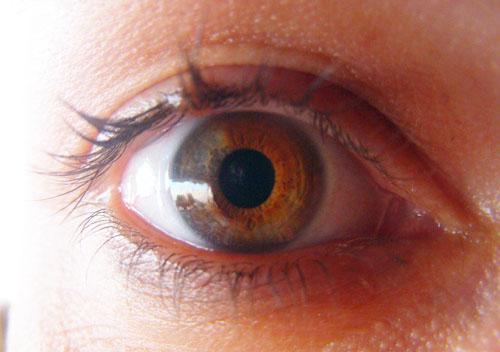 vanjaeyeimprintblog2010.jpg