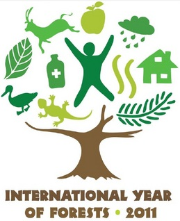 2011: Ano Internacional das Florestas
