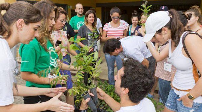 Ação ambiental: plante árvores da Mata Atlântica!